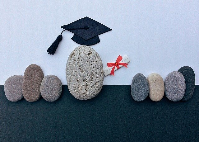 Ausbildung - Weiterbildung - DGsv